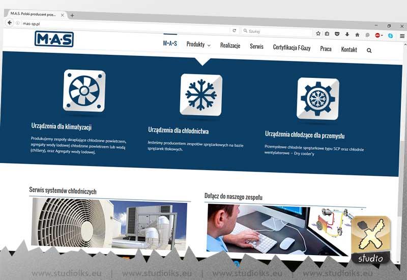 strona internetowa MAS
